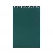 Блокнот Nettuno Mini в линейку, зеленый