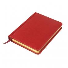 Ежедневник недатированный JOY, формат А6+